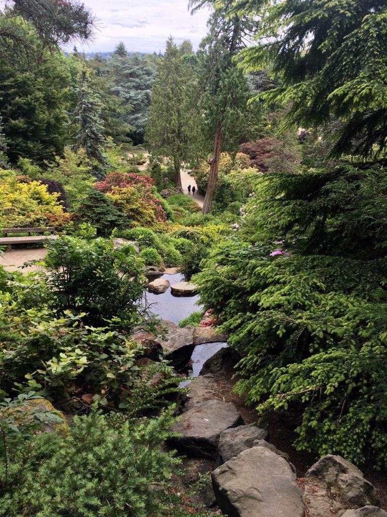 Kubota Garden June 2018